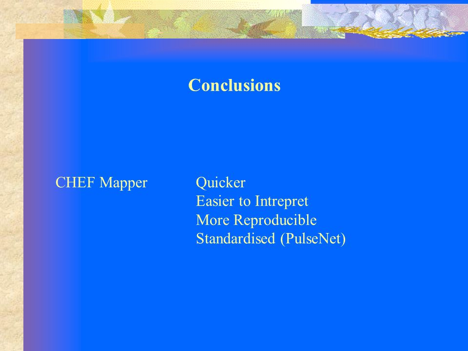 CHEF MapperQuicker Easier to Intrepret More Reproducible Standardised (PulseNet) Conclusions