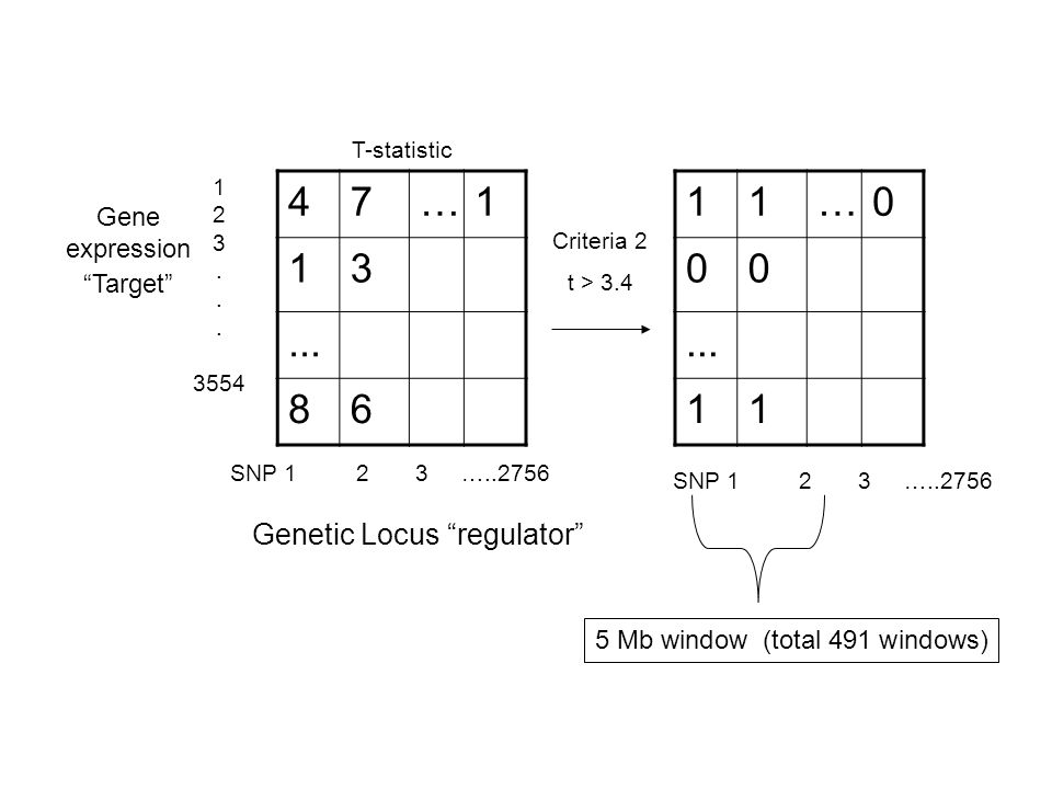 47… Gene expression Target Genetic Locus regulator