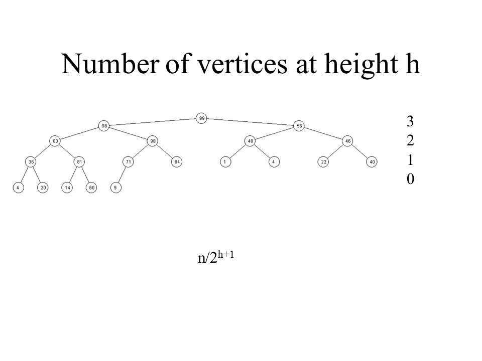 Number of vertices at height h 32103210 n/2 h+1