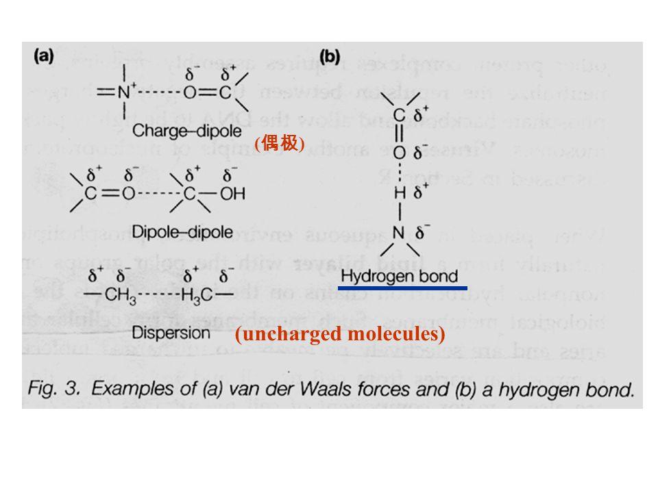 ( 偶极 ) (uncharged molecules)