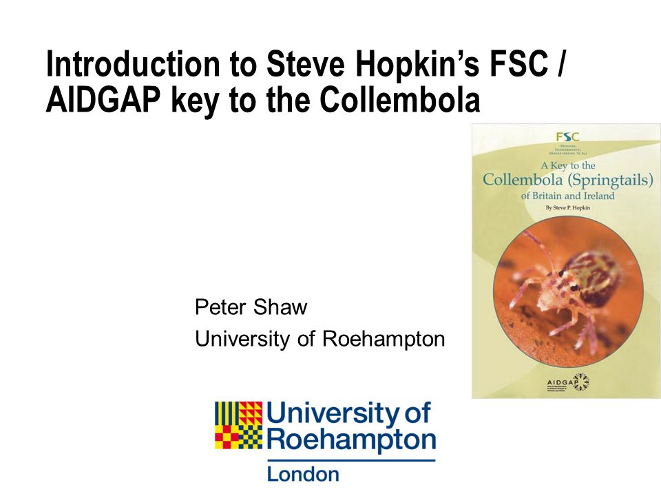 Introduction to Steve Hopkin's FSC / AIDGAP key to the Collembola Peter Shaw University of Roehampton