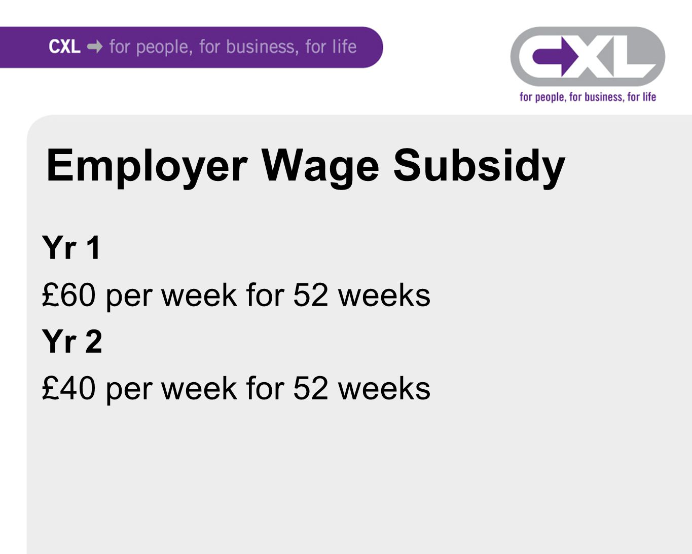 Employer Wage Subsidy Yr 1 £60 per week for 52 weeks Yr 2 £40 per week for 52 weeks