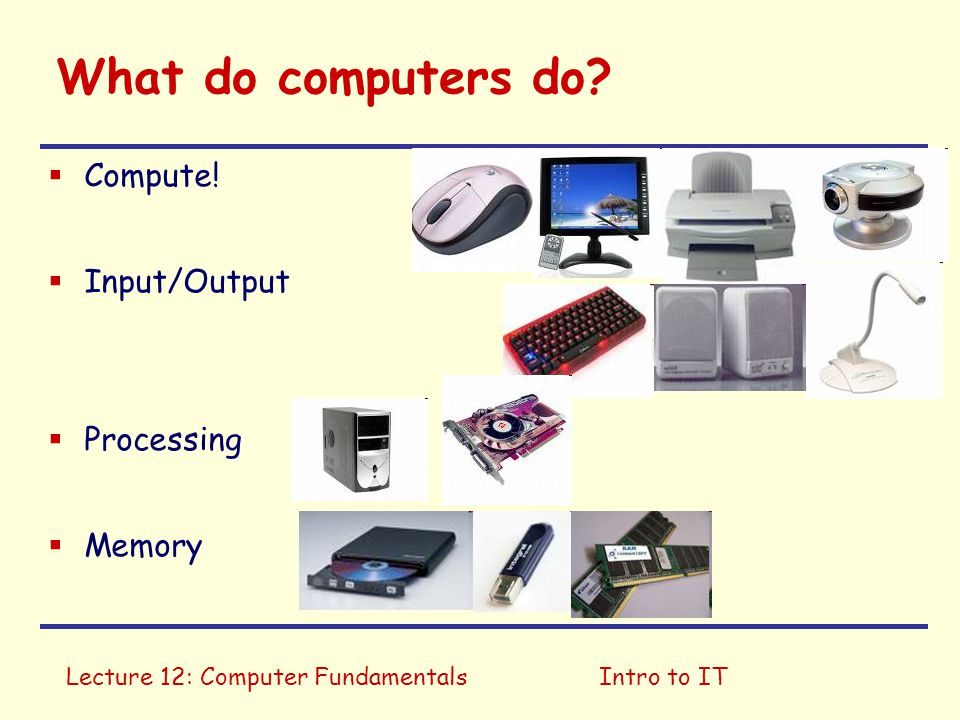 Lecture 12: Computer FundamentalsIntro to IT What do computers do?  Compute!  Input/Output  Processing  Memory