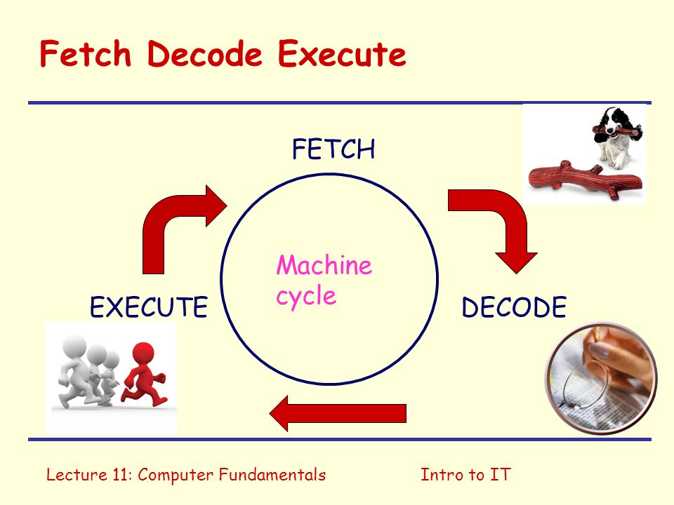 Lecture 11: Computer FundamentalsIntro to IT Fetch Decode Execute FETCH EXECUTEDECODE Machine cycle