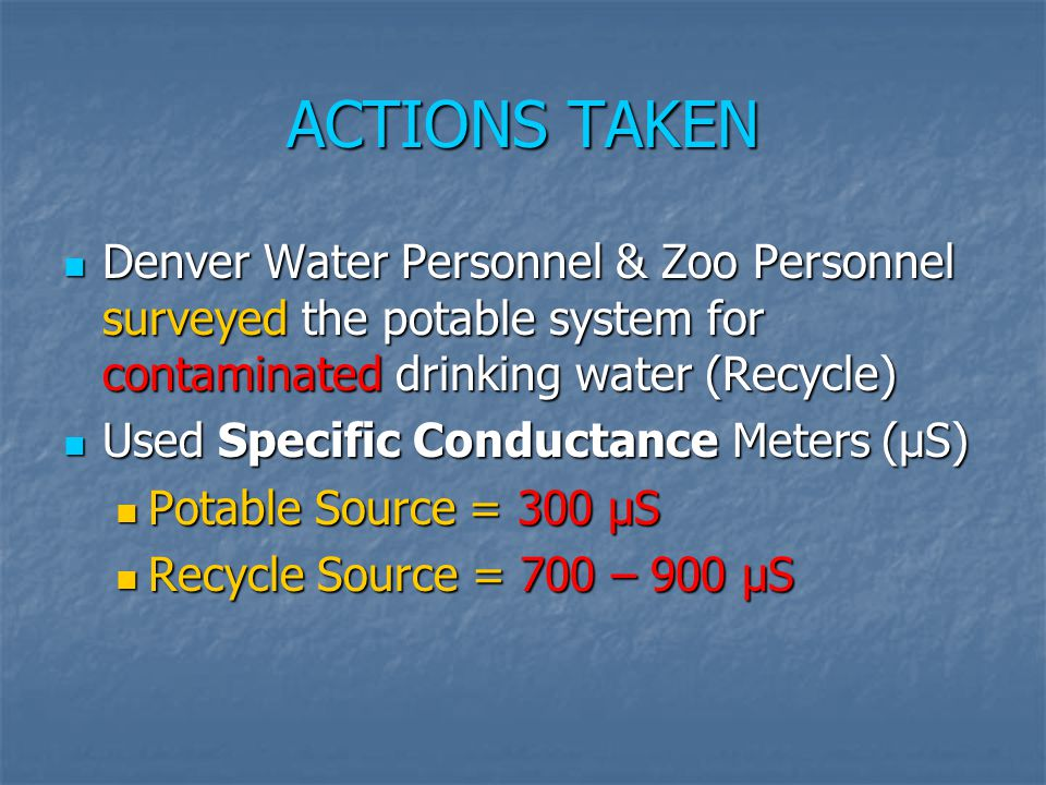 ACTIONS TAKEN Denver Water Personnel & Zoo Personnel surveyed the potable system for contaminated drinking water (Recycle) Denver Water Personnel & Zo
