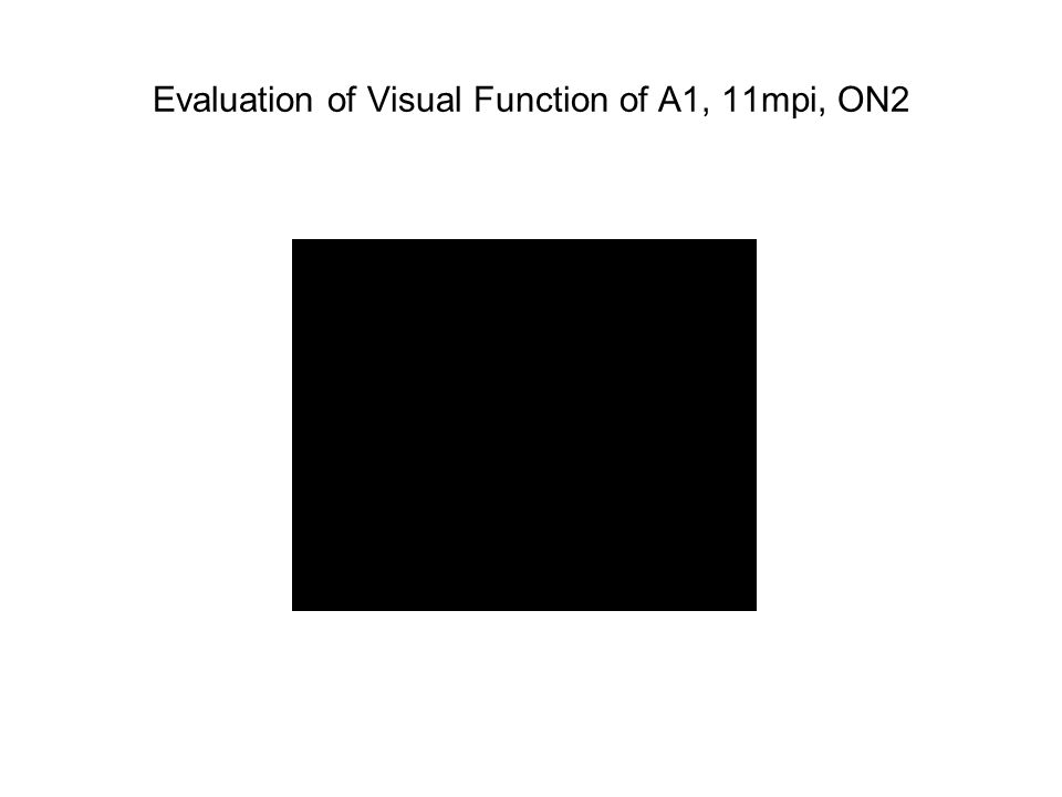 Evaluation of Visual Function of A1, 11mpi, ON2