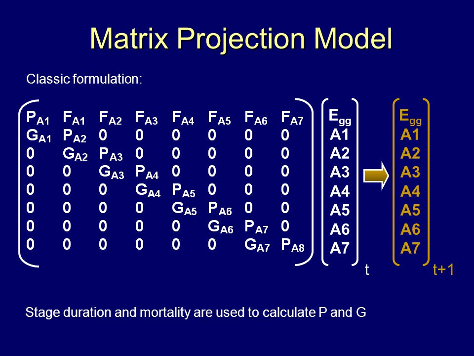 t+1 E gg A1 A2 A3 A4 A5 A6 A7 t Matrix Projection Model Matrix Projection Model E gg A1 A2 A3 A4 A5 A6 A7 Stage duration and mortality are used to calculate P and G Classic formulation: