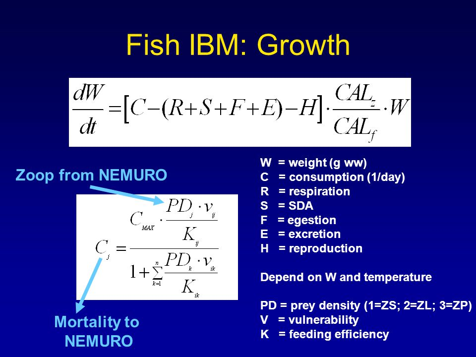 Fish IBM: Growth W = weight (g ww) C = consumption (1/day) R = respiration S = SDA F = egestion E = excretion H = reproduction Depend on W and temperature PD = prey density (1=ZS; 2=ZL; 3=ZP) V = vulnerability K = feeding efficiency Zoop from NEMURO Mortality to NEMURO
