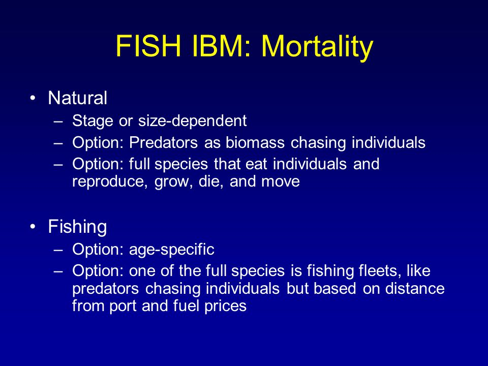 FISH IBM: Mortality Natural –Stage or size-dependent –Option: Predators as biomass chasing individuals –Option: full species that eat individuals and reproduce, grow, die, and move Fishing –Option: age-specific –Option: one of the full species is fishing fleets, like predators chasing individuals but based on distance from port and fuel prices