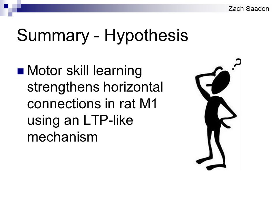 Summary - Hypothesis Motor skill learning strengthens horizontal connections in rat M1 using an LTP-like mechanism Zach Saadon