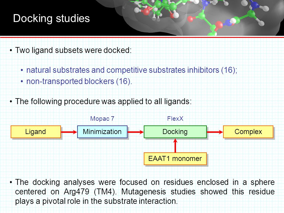 Docking studies Two ligand subsets were docked: natural substrates and competitive substrates inhibitors (16); non-transported blockers (16).