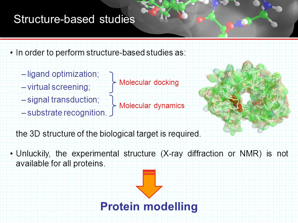 What's the protein modelling .