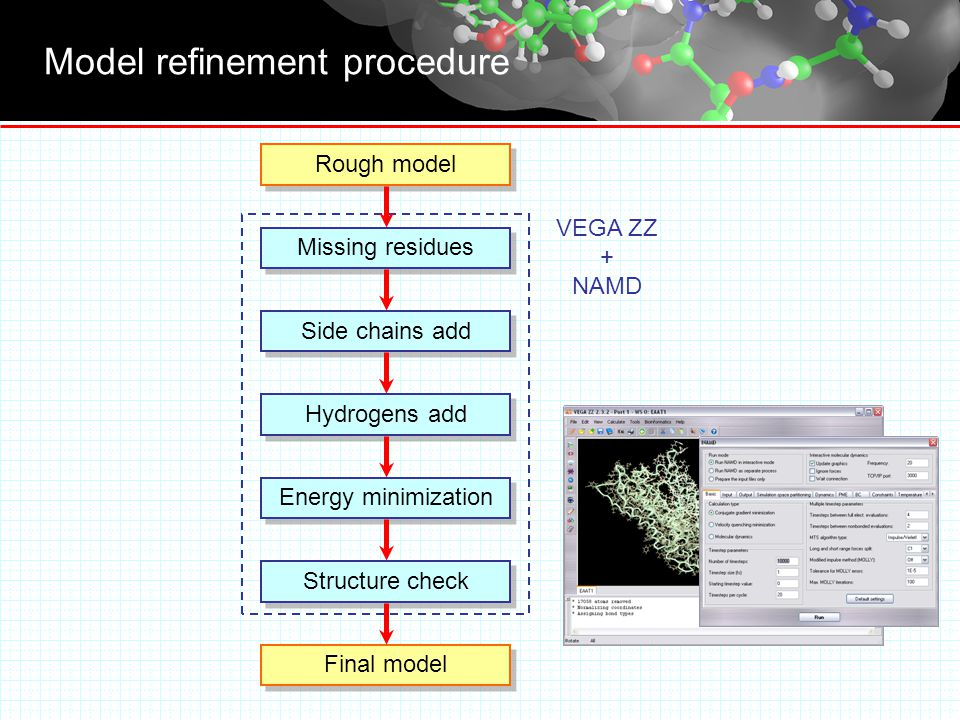 Model refinement procedure Missing residues Side chains add Hydrogens add Energy minimization Final model Rough model VEGA ZZ + NAMD Structure check