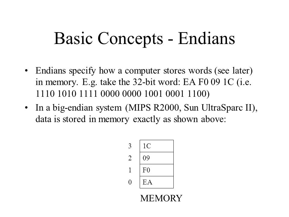 Basic Concepts - Endians Endians specify how a computer stores words (see later) in memory. E.g. take the 32-bit word: EA F0 09 1C (i.e. 1110 1010 111