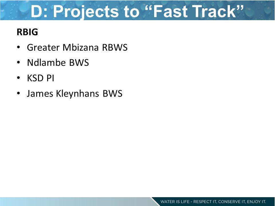 "D: Projects to ""Fast Track"" RBIG Greater Mbizana RBWS Ndlambe BWS KSD PI James Kleynhans BWS"