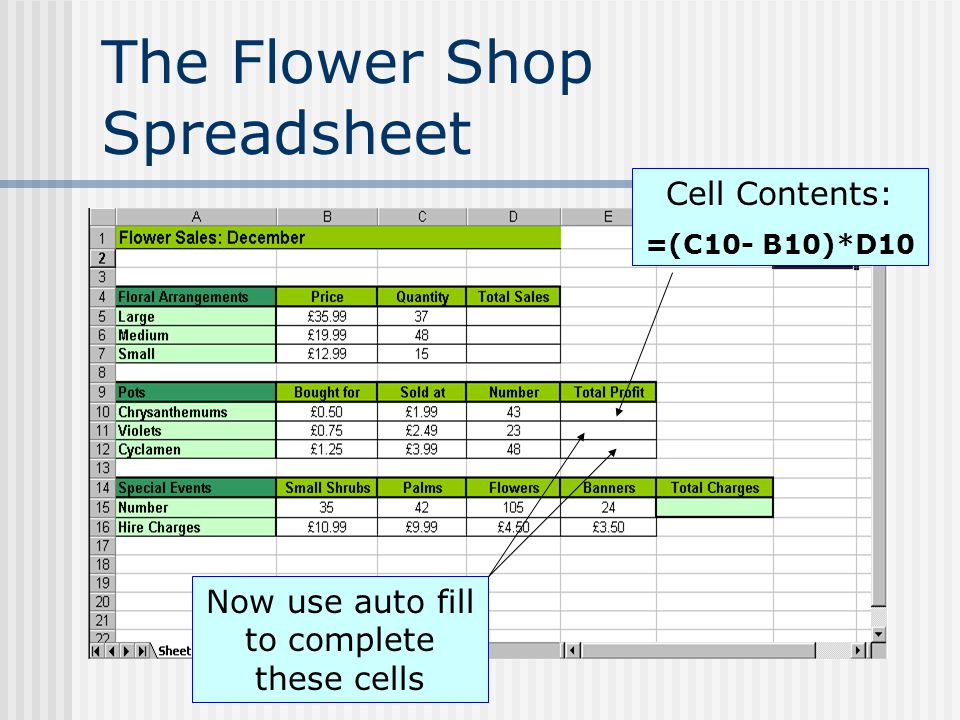 The Flower Shop Spreadsheet Cell Contents: =(C10- B10)*D10 Now use auto fill to complete these cells