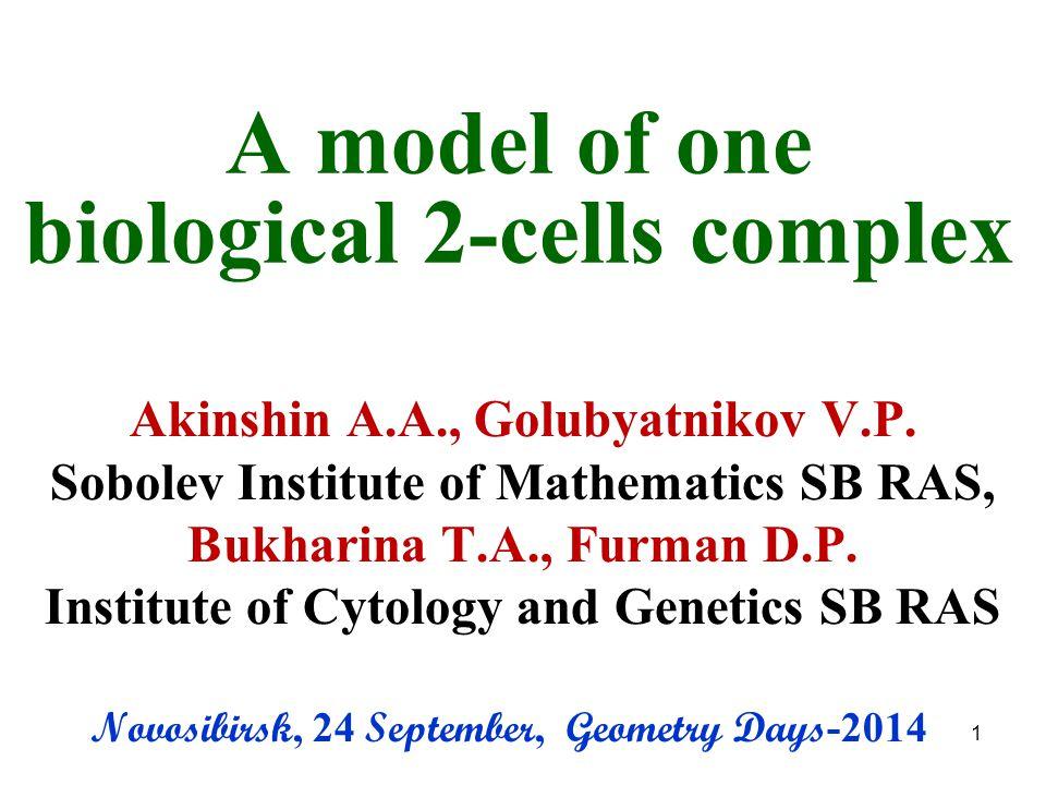 A model of one biological 2-cells complex Akinshin A.A., Golubyatnikov V.P.