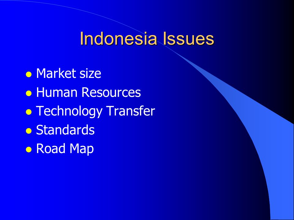 Indonesia Issues l Market size l Human Resources l Technology Transfer l Standards l Road Map