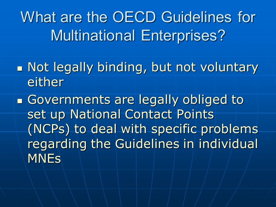 What are the OECD Guidelines for Multinational Enterprises.