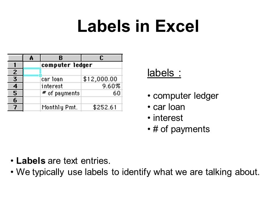Labels in Excel labels : computer ledger car loan interest # of payments Labels are text entries. We typically use labels to identify what we are talk
