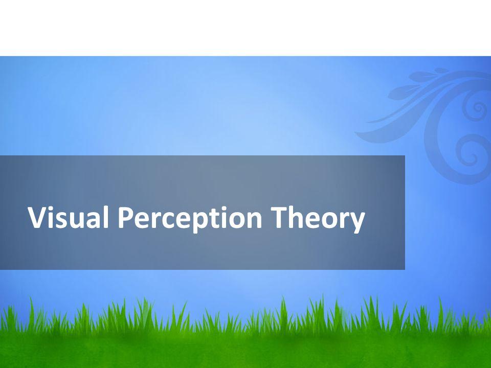 Visual Perception Theory