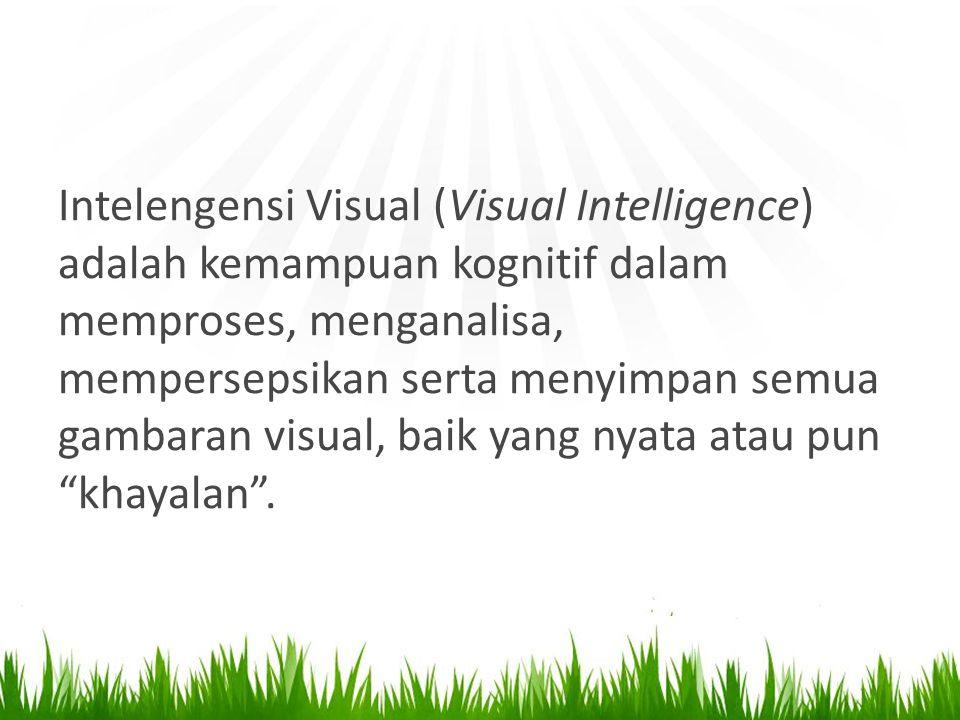 Intelengensi Visual (Visual Intelligence) adalah kemampuan kognitif dalam memproses, menganalisa, mempersepsikan serta menyimpan semua gambaran visual, baik yang nyata atau pun khayalan .