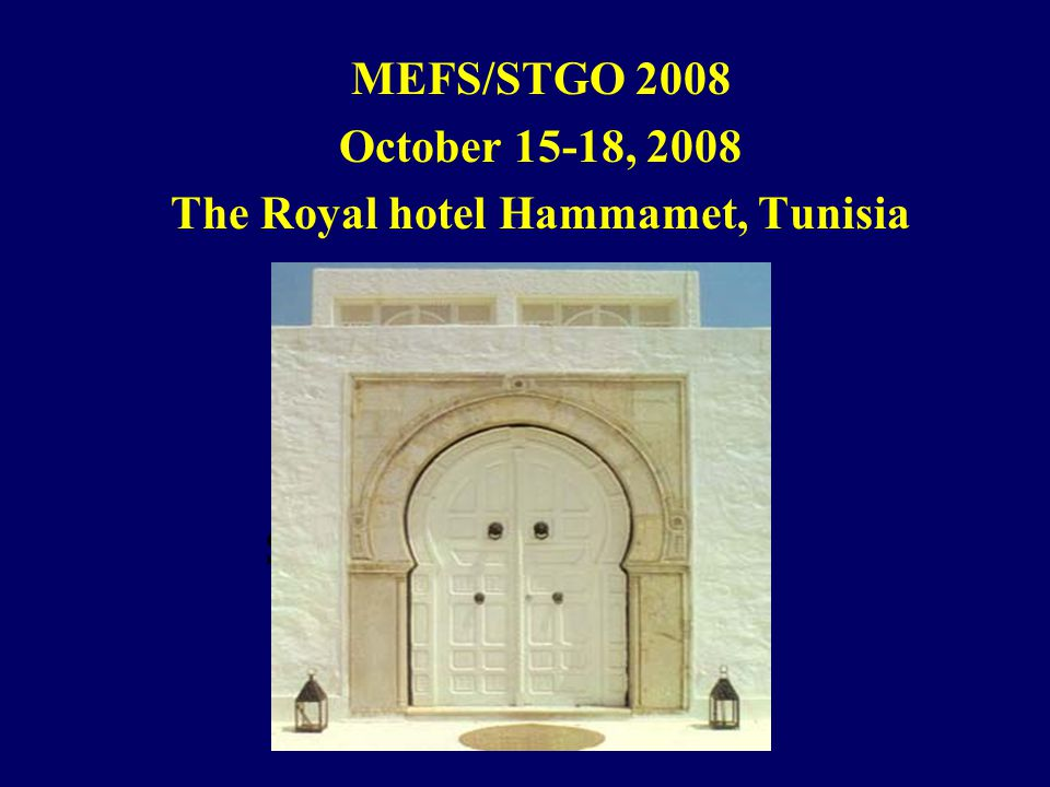 MEFS/STGO 2008 October 15-18, 2008 The Royal hotel Hammamet, Tunisia See you in Tunis