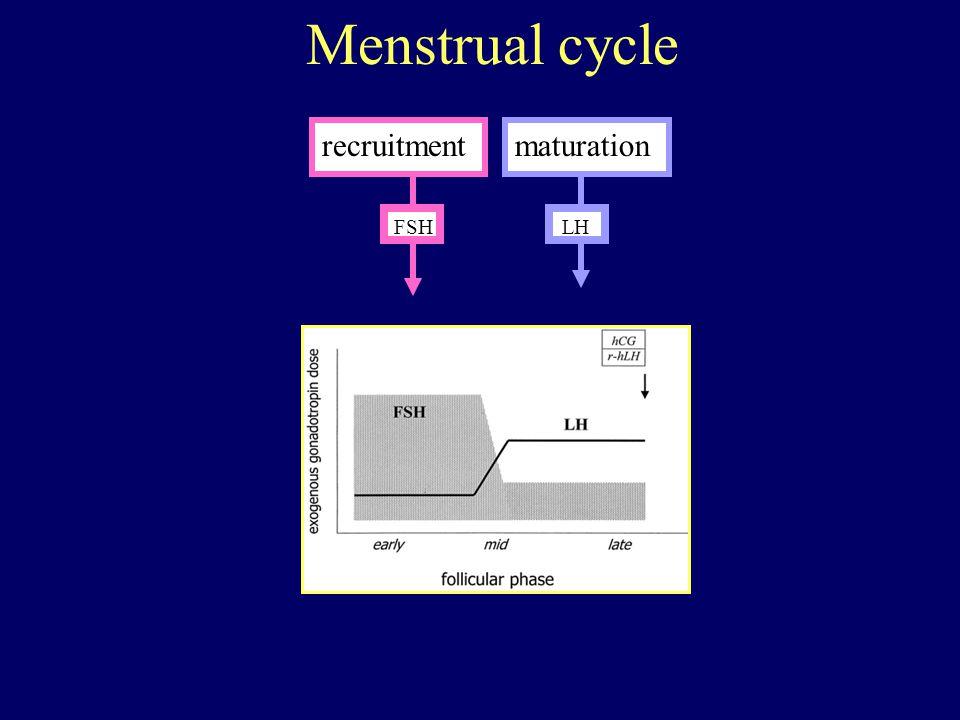 recruitmentmaturation FSHLH Menstrual cycle