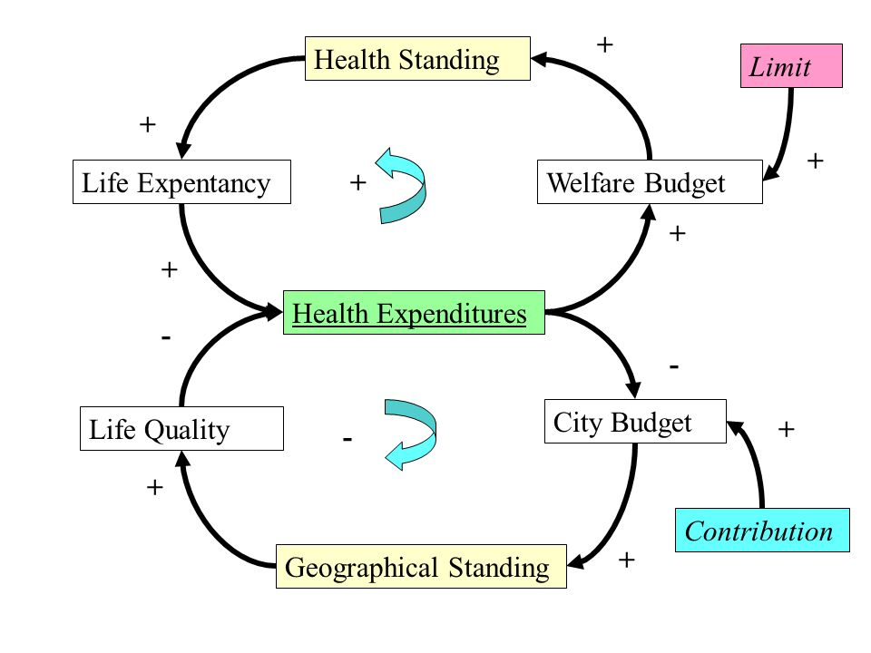 Health Expenditures Health Standing Geographical Standing Welfare Budget Limit Life Expentancy Life Quality City Budget Contribution + + - + + + + + + - + -