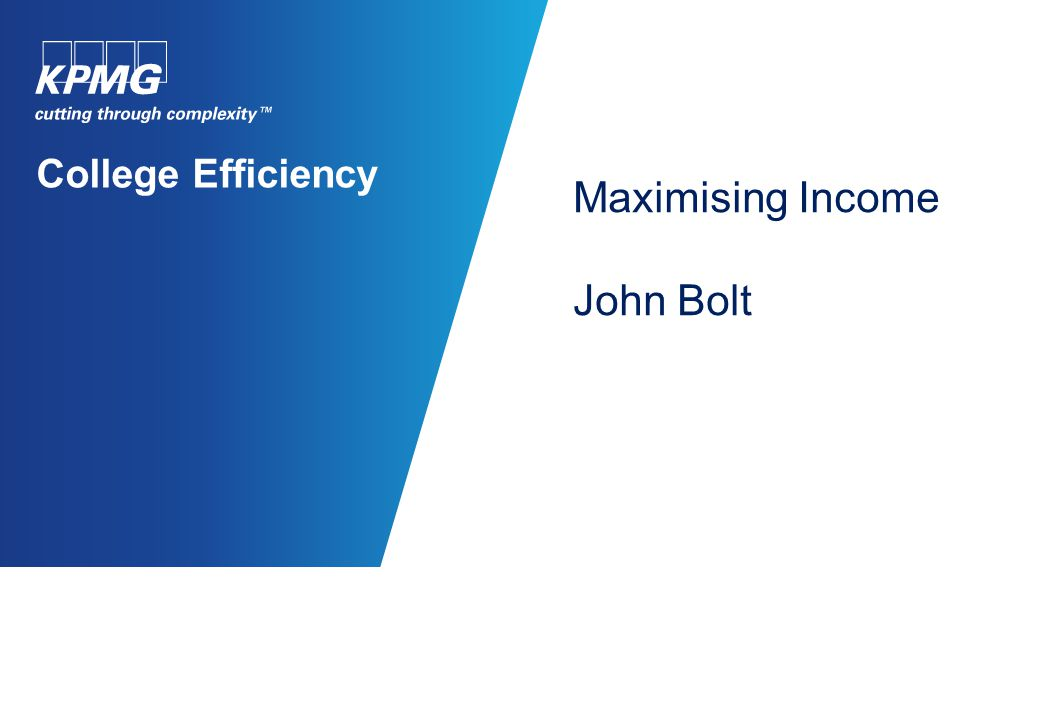 College Efficiency Maximising Income John Bolt