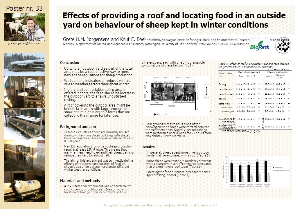 Effects of providing a roof and locating food in an outside yard on behaviour of sheep kept in winter conditions Conclusion  Utilizing an outdoor yar