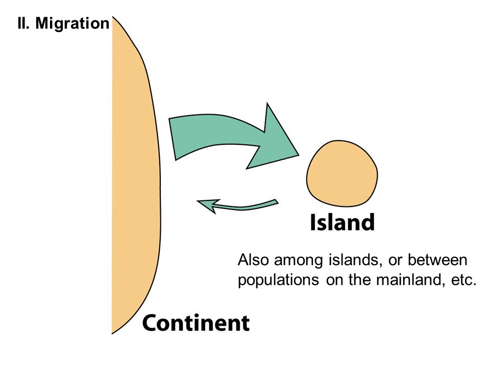 II. Migration Also among islands, or between populations on the mainland, etc.