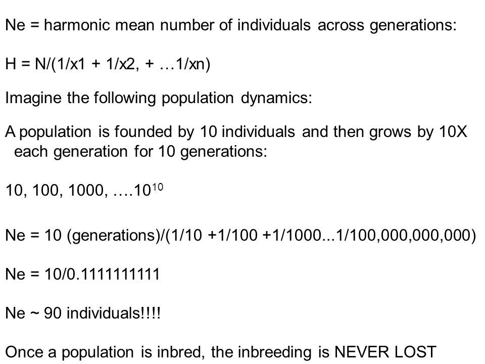 Ne = harmonic mean number of individuals across generations: H = N/(1/x1 + 1/x2, + …1/xn) Imagine the following population dynamics: A population is founded by 10 individuals and then grows by 10X each generation for 10 generations: 10, 100, 1000, ….10 10 Ne = 10 (generations)/(1/10 +1/100 +1/1000...1/100,000,000,000) Ne = 10/0.1111111111 Ne ~ 90 individuals!!!.