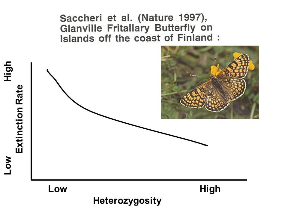 Low High Heterozygosity Low High Extinction Rate