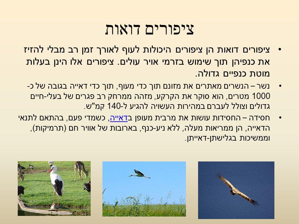 ציפורים דואות ציפורים דואות הן ציפורים היכולות לעוף לאורך זמן רב מבלי להזיז את כנפיהן תוך שימוש בזרמי אויר עולים. ציפורים אלו הינן בעלות מוטת כנפיים ג