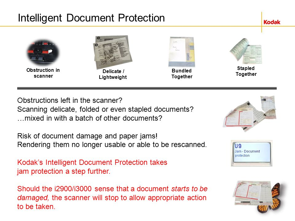 How does Intelligent Document Protection work?