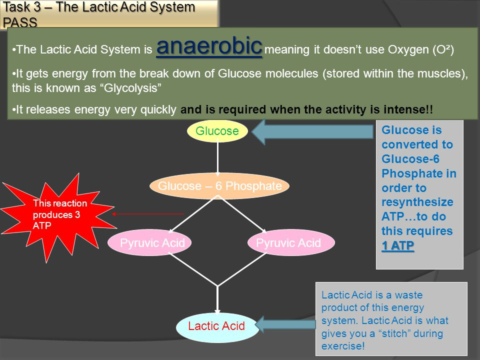 Task 3 – The Lactic Acid System PASS anaerobicThe Lactic Acid System is anaerobic meaning it doesn't use Oxygen (O²) It gets energy from the break down of Glucose molecules (stored within the muscles), this is known as Glycolysis It releases energy very quickly and is required when the activity is intense!.