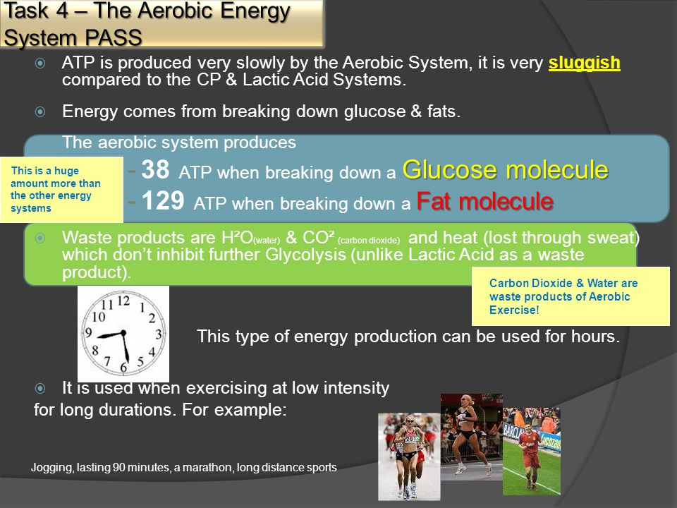  ATP is produced very slowly by the Aerobic System, it is very sluggish compared to the CP & Lactic Acid Systems.