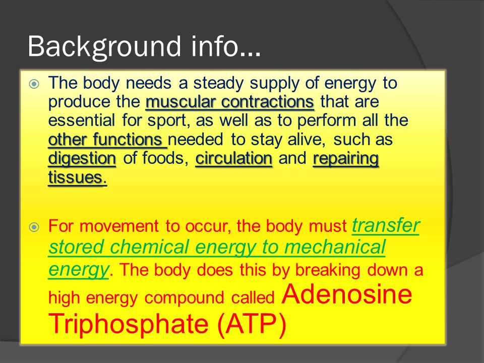 Background info… muscular contractions other functions digestion circulationrepairing tissues  The body needs a steady supply of energy to produce the muscular contractions that are essential for sport, as well as to perform all the other functions needed to stay alive, such as digestion of foods, circulation and repairing tissues.