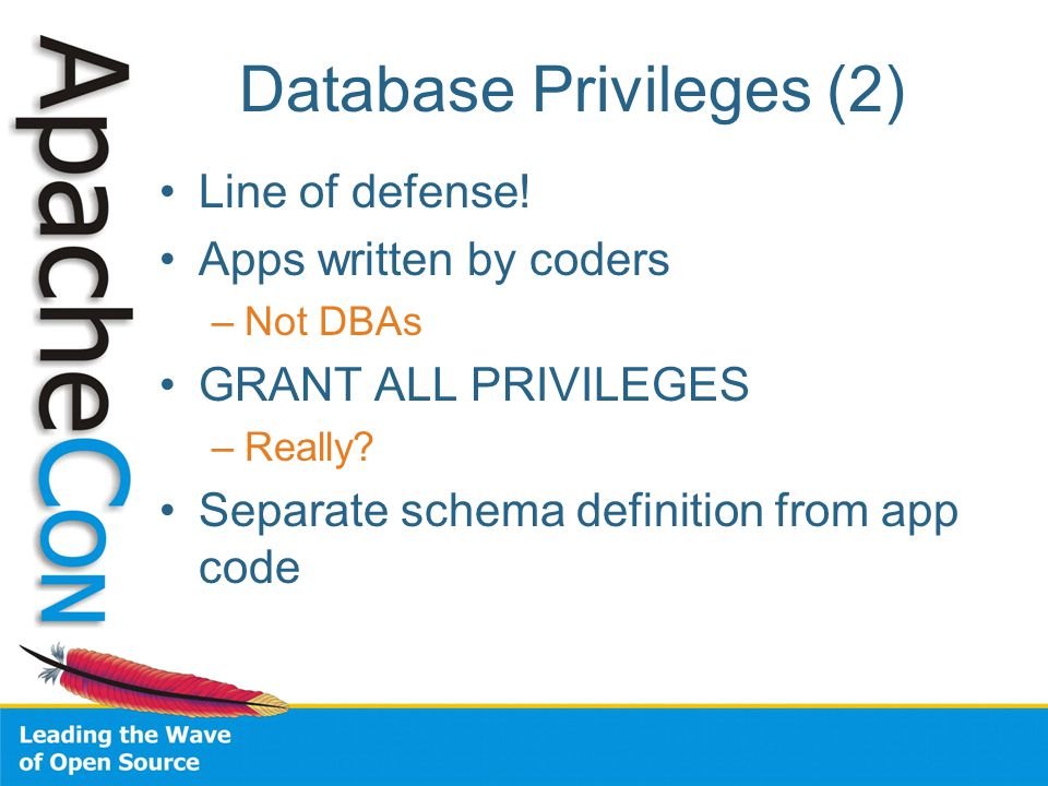 Database Privileges (2) Line of defense.