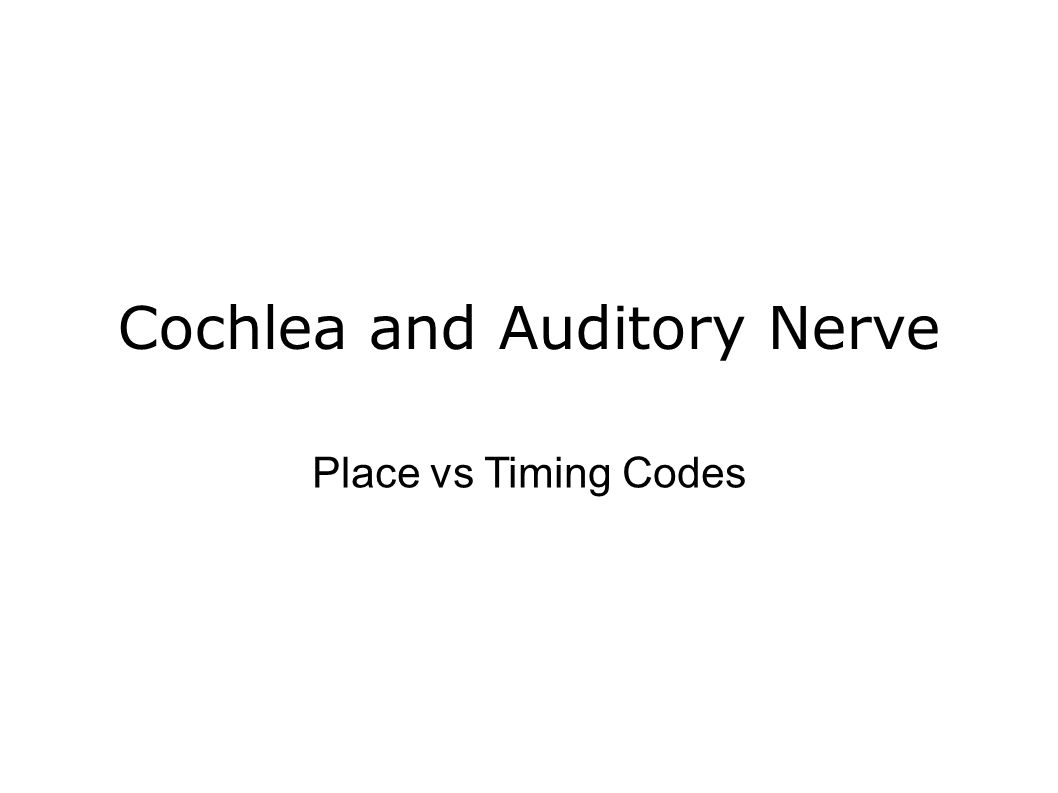 Cochlea and Auditory Nerve Place vs Timing Codes