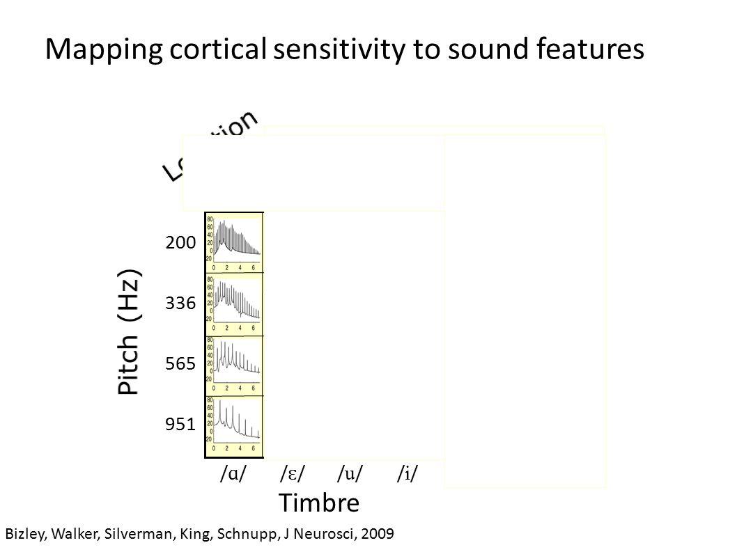 Mapping cortical sensitivity to sound features Bizley, Walker, Silverman, King, Schnupp, J Neurosci, 2009 200 336 565 951 Timbre /ɑ//ɑ//ɛ//ɛ/ /u//u//i