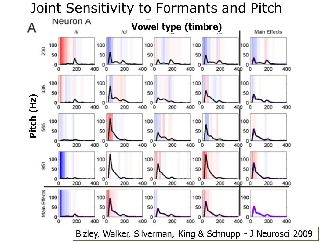 Pitch (Hz) Vowel type (timbre) Joint Sensitivity to Formants and Pitch Bizley, Walker, Silverman, King & Schnupp - J Neurosci 2009