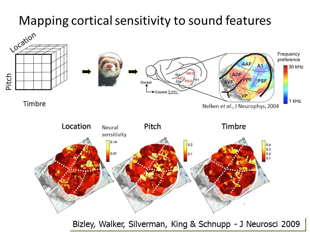Mapping cortical sensitivity to sound features Neural sensitivity Timbre Nelken et al., J Neurophys, 2004 Bizley, Walker, Silverman, King & Schnupp -