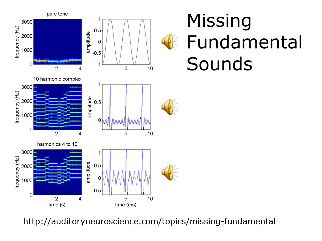 Rate modulation tuning curves for clicks, SAMn and IRN Schnupp, Garcia-Lazaro & Lesica, SfN abstracts 2013 Periodotopy?