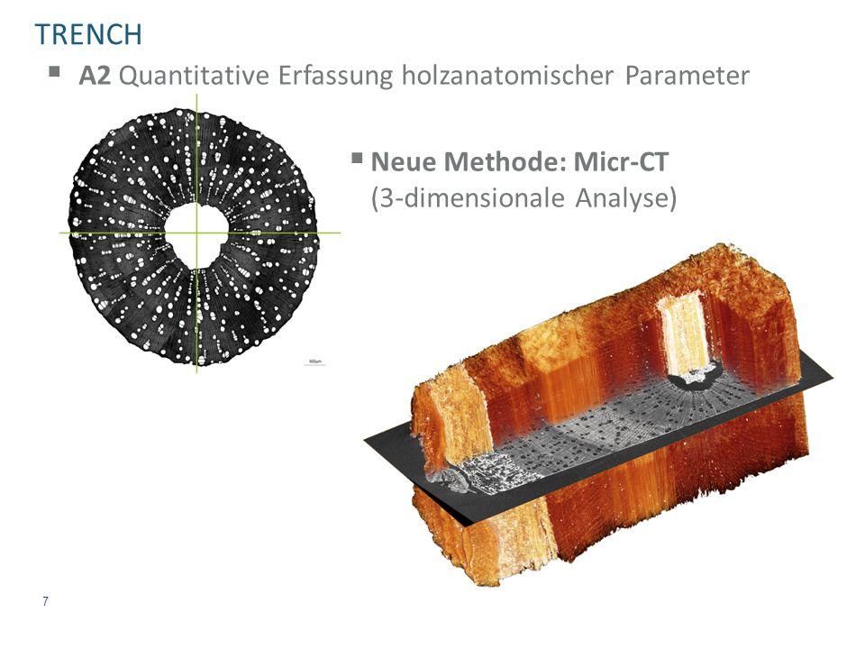 TRENCH  A2 Quantitative Erfassung holzanatomischer Parameter  Neue Methode: Micr-CT (3-dimensionale Analyse) 7