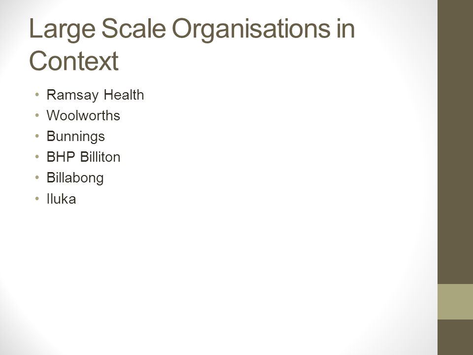 Large Scale Organisations in Context Ramsay Health Woolworths Bunnings BHP Billiton Billabong Iluka