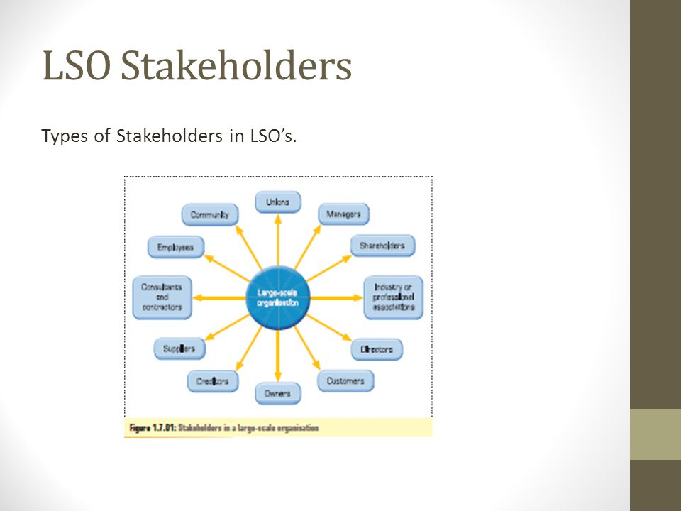 LSO Stakeholders Types of Stakeholders in LSO's.