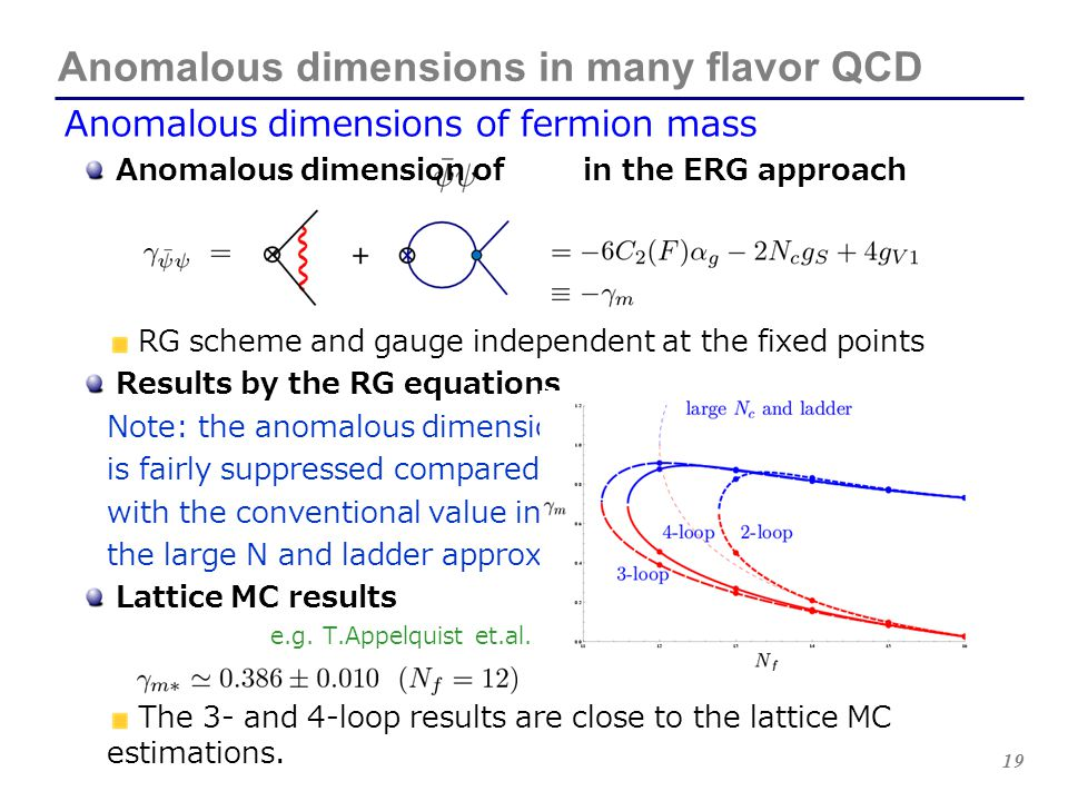 19 Anomalous dimensions in many flavor QCD Anomalous dimensions of fermion mass Anomalous dimension of in the ERG approach RG scheme and gauge indepen