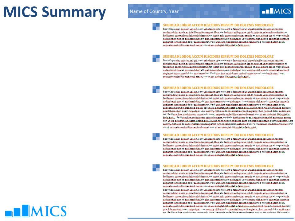 MICS Summary
